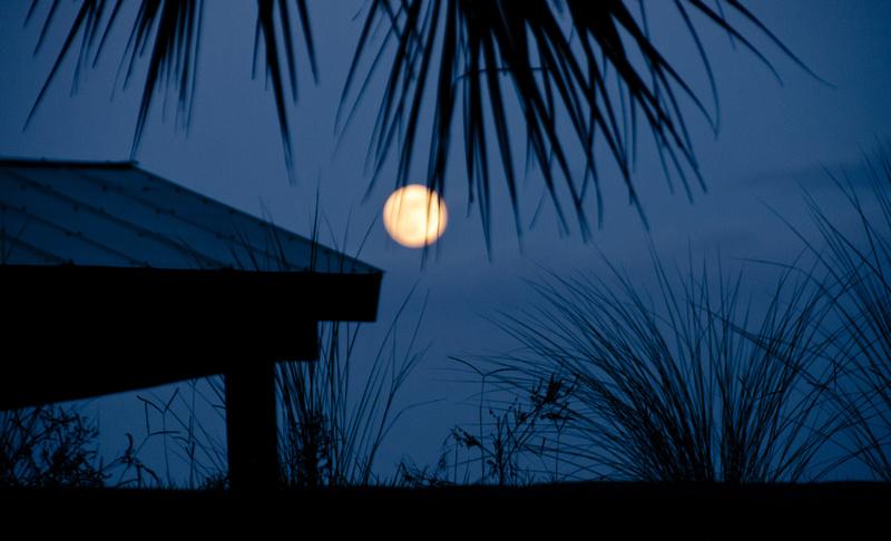 Moon in Blue... Luna Jade ~ BeautySuspended.com